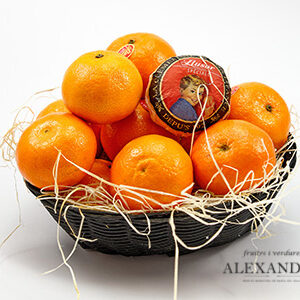 clementina llusar