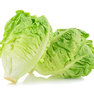 cogollos fruta y verdura verduras y hortalizas