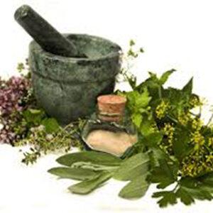 FORMULA PLANTAS MEDICINALES
