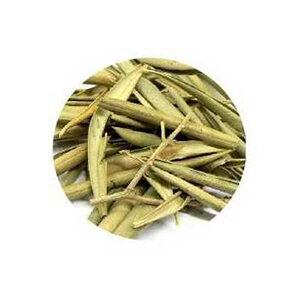 olivo hojas trituradas