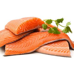 salmon pescado