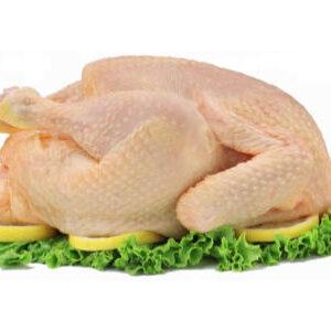 Pollo de pagès